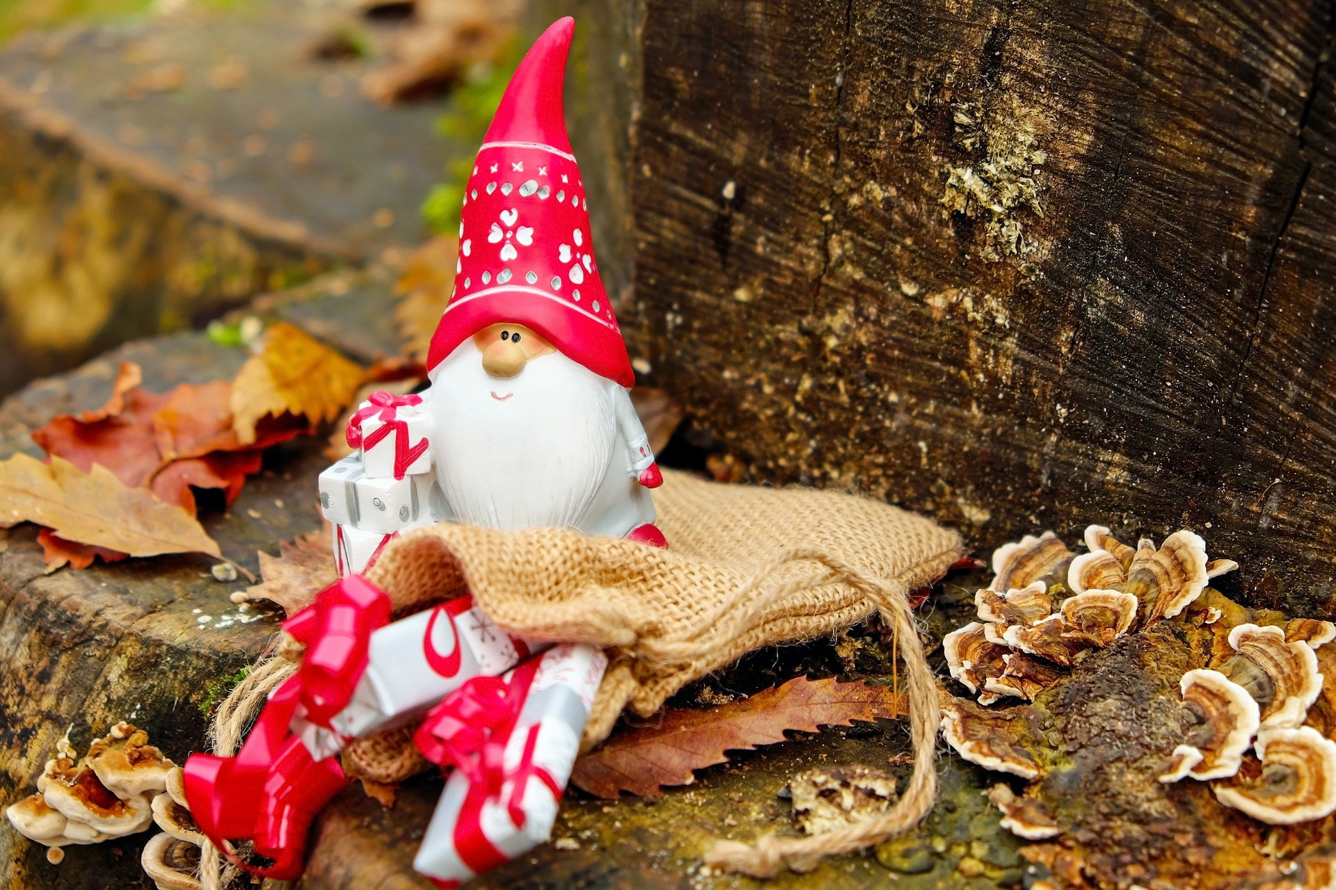 Organiser Noël en Entreprise